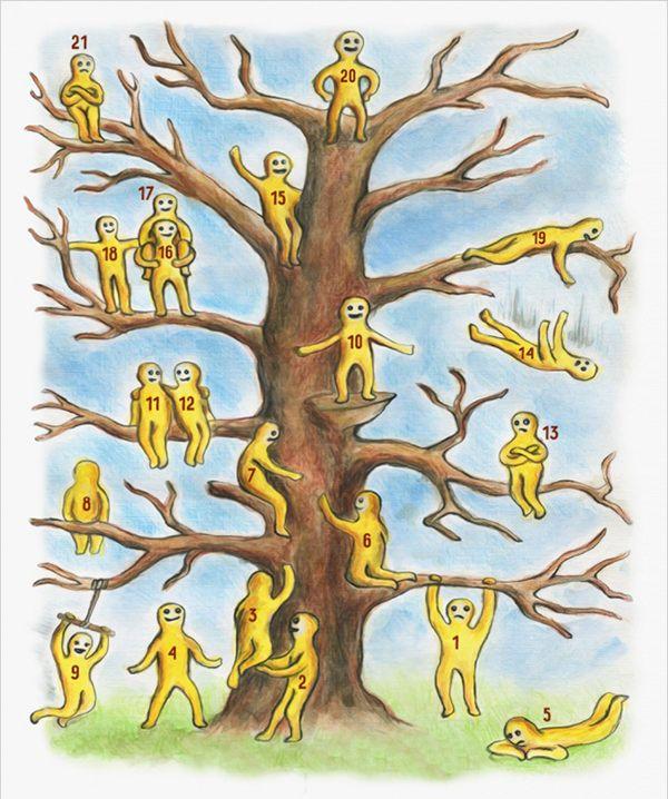 Къде сте на дървото?