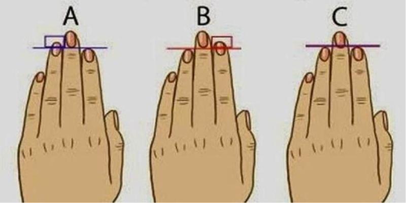 тип личност според дължината на пръстите Светлило